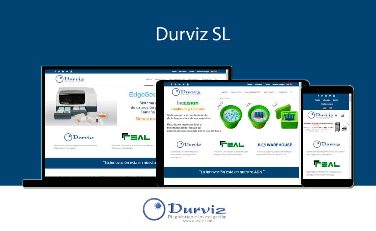 Desarrollo web Durviz